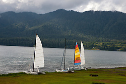 Sailboats lined up on the shore of Lake Quinault, near Olympic National Park, Washington, United States of America