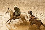 Pickup man Kyle Shaw, saddle bronc, Miles City Bucking Horse Sale, Montana