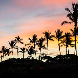 Maui Hawaii Wailea Makena palm trees sunrise with colorful orange and blue colors. Photo copyright ⓒ 2019 Paul Velgos with All Rights Reserved.