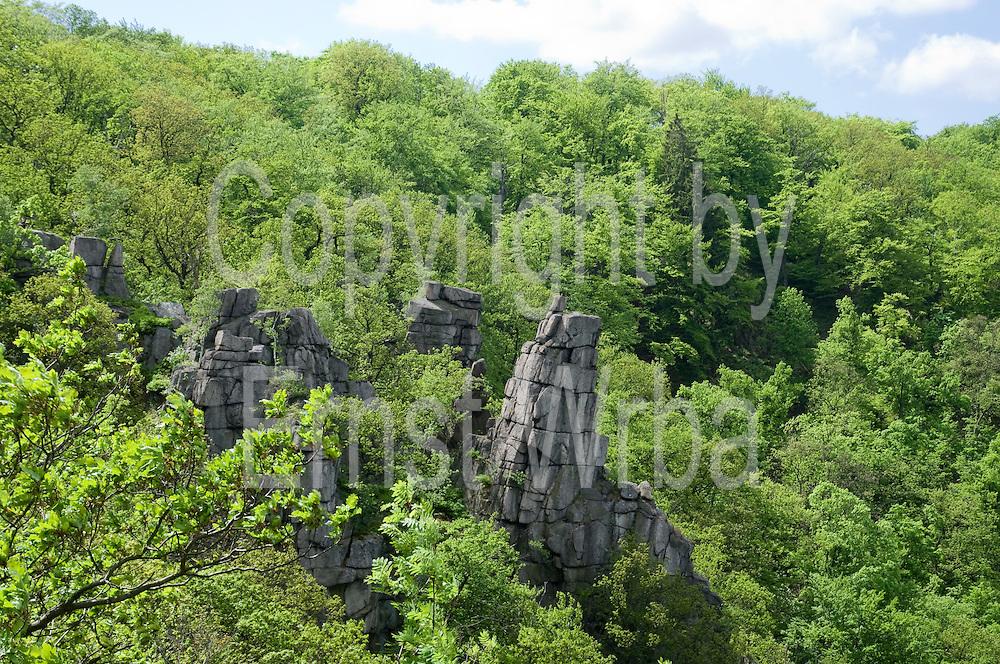 Felsen im Bodetal, Thale, Harz, Sachsen-Anhalt, Deutschland | rocks in valley of river Bode, Thale, Harz, Saxony-Anhalt, Germany