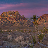 Sunrise over Mt Wilson at Red Rock Canyon National Conservation Area.  Las Vegas, Nevada, USA