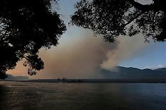Blenheim-Fires crews fight bush fire  in the Waikakaho Valley