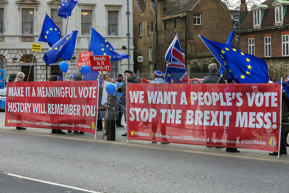 © Licensed to London News Pictures. 09/01/2019. London, UK. Anti-Brexit demonstrators protest outside the Houses of Parliament on the first day of the Meaningful Vote debate. At the end of the five day debate the MPs will vote on Prime Minister, Theresa May's Brexit deal. Photo credit: Dinendra Haria/LNP