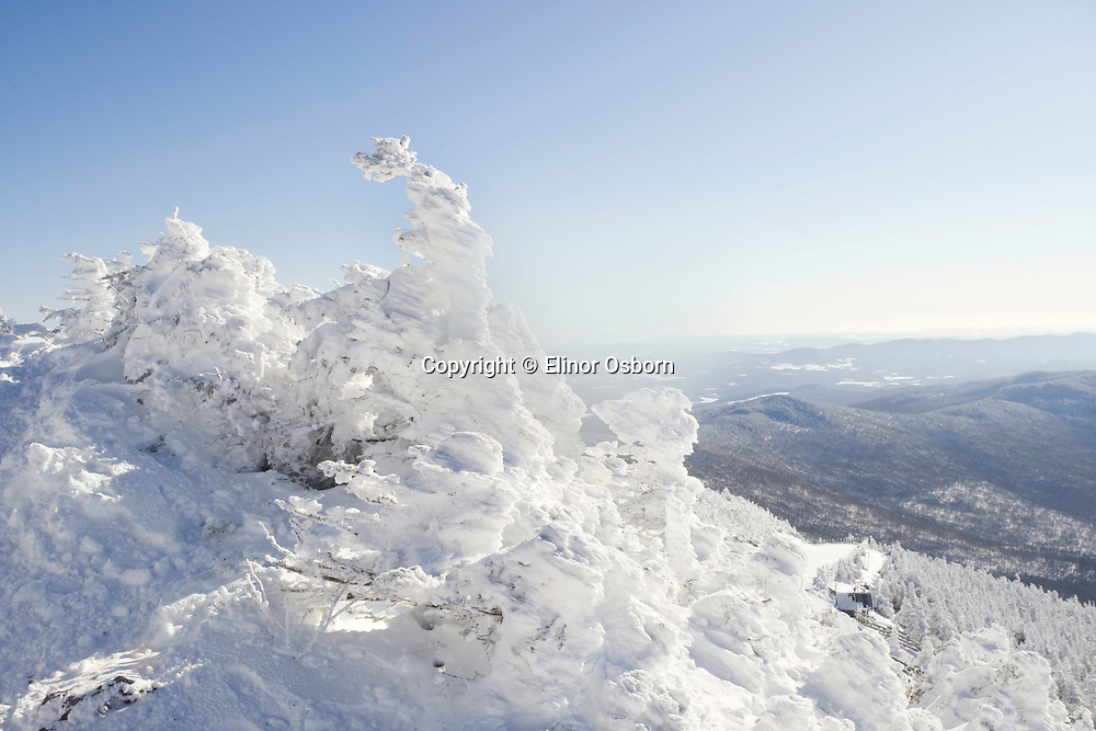 Rime Ice on Jay Peak
