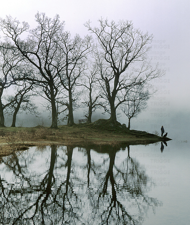 A figure with a dog standing beside a lake with trees