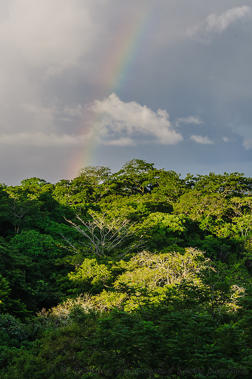 Pacific coast Rio Nosara estuary, rainbow at sunrise; Lagarta Lodge, Nosara, Costa Rica