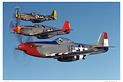 P-51 Mustangs in formation, air-to-air