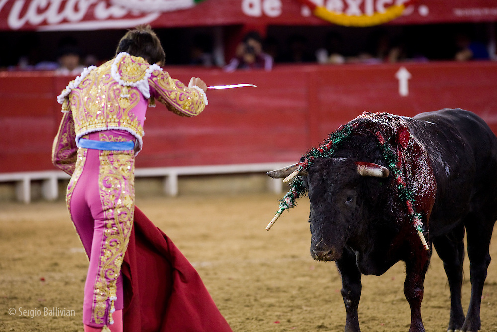 A bullfighter prepares to kill the bull with his sword at the Plaza de Toros in Morelia, Mexico.