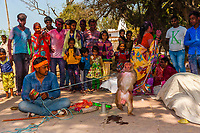 Trained monkeys performing for crowd, Lathmar Holi (festival of colors), Barsana, Uttar Pradesh, India.