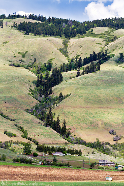 Farmland on Vernon Mountain in Coldstream, British Columbia, Canada