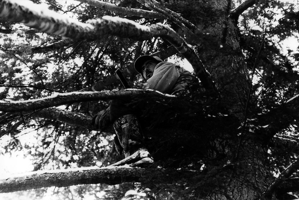 Dave Rose waiting for deer in tree-stand.