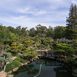 Japanese Gardens, Hayward, CA