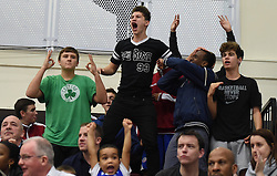Bristol Flyers fans celebrate as their team score - Photo mandatory by-line: Paul Knight/JMP - Mobile: 07966 386802 - 15/11/2014 - SPORT - Football - Bristol - SGS Wise Arena - Bristol Flyers v Cheshire Phoenix - Bristol Basketball League