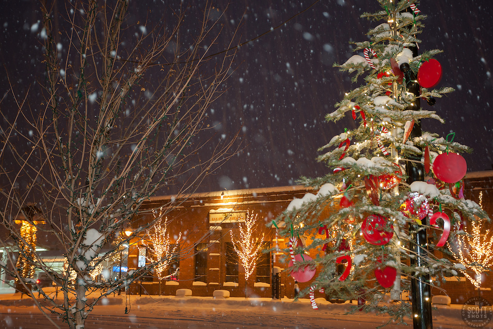 """Snowy Christmas Tree in Truckee 7"" - Photograph of a snowy Christmas tree in Downtown Truckee, California. Photographed during a snow storm in the early morning."