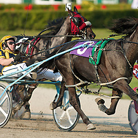 Harness Racing 2009 - Gallery 01