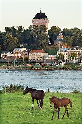 Nederland, Nijmegen, 4-10-2005Een Donjon van steigerpalen van 47 meter hoog is op het Valkhof gebouwd in het kader van de viering van Nijmegen 2000 jaar. Het is een replica in ijzer van de toren die onderdeel was van de Valkhofburcht van Frederik Barbarossa, die rond 1795 is afgebroken en als puin verhandeld is. De Valkhofvereniging ijvert al jaren voor herbouw. Bij de gemeenteraadsverkiezingen van 7 maart 2006 heeft 60% van de bevolking per referendum voor de herbouw gestemd.  Breekpunt is de eis om het park openbaar toegankelijk te houden, hetgeen vrijwel onmogelijk wordt als de toren commercieel geexploiteerd moet worden. Ook de ondergrond zou niet stevig genoeg zijn.Foto: Flip Fransse