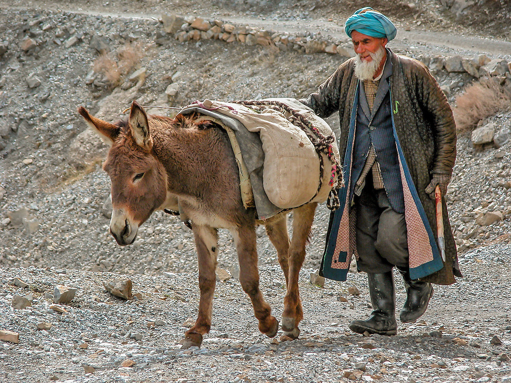 "Portrait of an old Tajik man winding his way from the fields to his village with his ""beast of burden"""