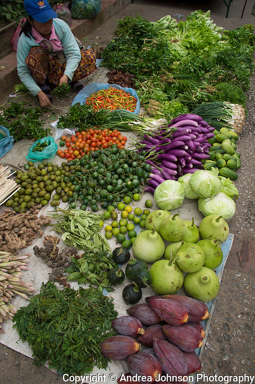 Plethora of fresh vegetables and fruit for sale at market, Luang Prabang, Laos