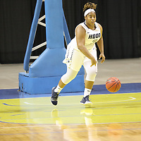 Women's Basketball: Hood College Blazers vs. University of Lynchburg Hornets