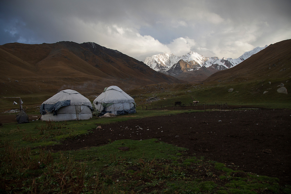 Nurdin Orozaliev's yurt camp in a side valley of the Chon Kemin. He runs nearly 70 cattle and around 500 sheep here all summer.