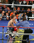 Referee Kenny Bayless takes up the count after the first knockdown in round one. Manny Pacquiao went on to knock out Ricky Hatton in the second round of their Light Welterweight title fight at the MGM Grand, Las Vegas , Nevada, 2nd May 2009.