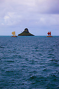 "Te Mana o Te Moana ""Spirit of the Sea"" 2011 voyage of 7 sailing canoes from the South Pacific. Celebration at Kualoa Park"