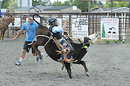 Bull, Steer & Calf Riding