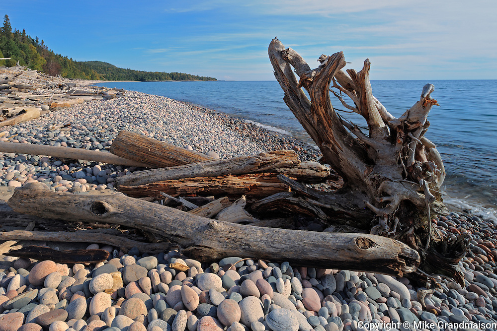 Driftwood along Pebble Beach on Lake Superior<br /> Marathon<br /> Ontario<br /> Canada