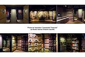 Unexpected Treasures - Musée national d'histoire naturelle