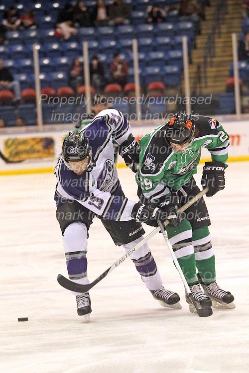 15 November 2013: Dustin Hopfner & Jake Trask.  Louisiana IceGators at Bloomington Thunder Southern Professional Hockey League (SPHL) at the U.S. Cellular Coliseum in Bloomington Illinois