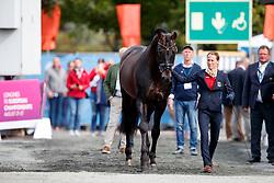 Langehanenberg Helen, GER, Damsey FRH<br /> Dressage Vetcheck<br /> European Championship Goteborg 2017<br /> © Hippo Foto - Stefan Lafrenz
