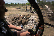 Elephant capture aerial<br />