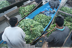 July 5, 2018 - Srinagar, Jammu and KASHMIR, India - Kashmiri vegetable seller sells vegetables at floating vegetable market in Srinagar summer capital of indian administered KASHMIR early in morning on Thursday 05 july 2018. (Credit Image: © Najmus Saqib/Pacific Press via ZUMA Wire)