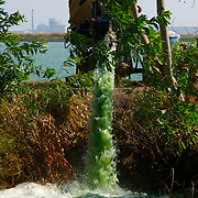 Polluted water from agricultural run-off being pumped into dykes at Nakhon Nayok in Thailand, Januaty 2007.