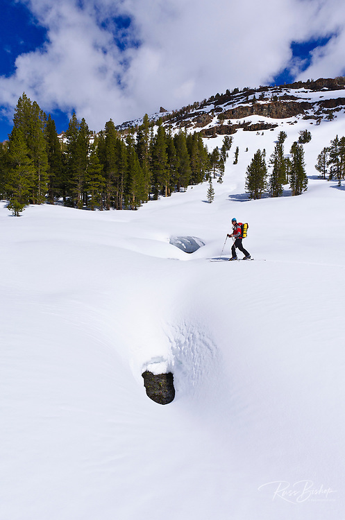 Backcountry skier crossing a snow bridge, Ansel Adams Wilderness, Sierra Nevada Mountains, California USA