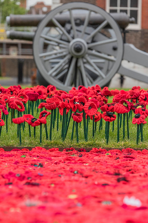 5000 Poppies, startes as a tribute by Lynn Berry and Margaret Knight to their fathers who fought in WW2 and, with the help of creative Director Phillip Johnson, became a project where over 50000 contributors submitted more than a quarter of a million hand knitted poppies.