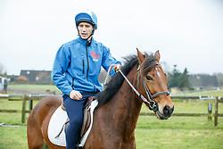 Mounted Games Moormann, Widukind (GER)<br /> Dobersdorf - Widukind Moormann Mounted Games Weltmeister 2016<br /> Vohrführung<br /> © www.sportfotos-lafrentz.de / Stefan Lafrentz