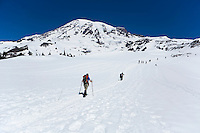 People hiking up the Muir snow field on the south side of Mt. Rainier, Mt. Rainier National Park, Washington, United States.