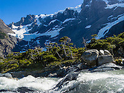 A stream tumbles by southern beech trees in the French Valley (Valle Frances) under Paine Grande (about 2700 meters elevation) in Torres Del Paine National Park, Chile, South America.