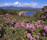 The Isle of Arran as seen from across Carradale bay, Kintyre, Argyll