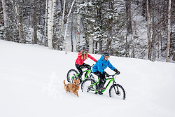 A couple and their dog fat tire biking on a snowy winter day in New Hampshire's White Mountains.