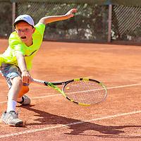Tennis Verband Berlin-Brandenburg