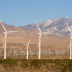 A wind farm in the San Gorgonio Mountain Pass in Palm Springs, California.