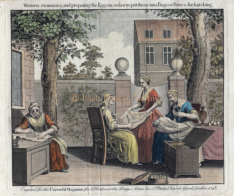 Women examining silk moth eggs and putting in boxes for hatching into caterpillars (silkworms). From 'The Universal Magazine', London, 1748