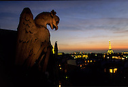 France. Paris. elevated view.The gargoyles of. Saint Clotilde chuch . the eiffel tower and the invalides