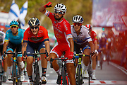 Arrival, Nacer Bouhanni (FRA - Cofidis) winner, during the UCI World Tour, Tour of Spain (Vuelta) 2018, Stage 6, Huercal Overa - San Javier Mar Menor 155,7 km in Spain, on August 30th, 2018 - Photo Luca Bettini / BettiniPhoto / ProSportsImages / DPPI