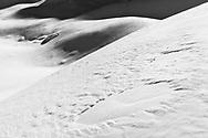 Wind drift on slopes, Muotathal, Schwyz, Switzerland