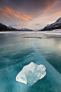 What bubbles beneath – Beautiful patterns of frozen bubbles trapped in Canada lake are highly flammable methane gas <br /><br />Like clouds perched in the sky on a windless day, the white and billowy bubbles in the frozen blue waters of Alberta, Canada's Abraham Lake are as picturesque as a scene on Earth can get.<br />But they are hiding a dangerous secret.<br />These buoyant bubbles aren't air, they're methane and they're trapped inside the frigid lake. That is, until spring comes and the ice starts to thaw.<br /><br /><br />Caused by the decomposition of organic matter—like plants, animals, and microbes—the extremely flammable gas begins to surge up in the warmer months as it floats ever closer to the surface.<br />For a time, it stays trapped beneath the last remnants of ice. And then the ice cracks and the methane bubbles away into the atmosphere.<br />That's when the gas can pose a problem.<br /><br />Methane is a greenhouse gas, with 20 times the effect on climate change as the more commonly fingered culprit carbon dioxide.<br />There are many frozen methane lakes like Abraham Lake. In fact, ecologist worry that as the planet warms, more and more methane will be released from them, and they'll increasingly add to the changing climate.<br />Methane is also very flammable.<br />Scientists working with methane-producing lakes in Alaska proved it was the flammable gas and not something less menacing bubbling up by drilling a hole, pouring in some warm water, like a tongue of flame,fire burst from the frozen depths.<br />But as dangerous as its flammability makes it, methane is also useful. <br />Methane lakes are beginning to be utilized as sources of energy, such as the outfit on Lake Kivu in Rwanda. Here, developers have begun tapping into extensive gas deposits underneath the lake to be used in the creation of electricity.<br /><br />Similar techniques are being used to mine something called methane hydrate, a frozen and extremely concentrated form of methane,