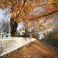 Fall scenic, Connecticut, USA