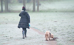 © Licensed to London News Pictures. 10/01/2019. Sidcup, UK. A dog walker braving the frost at Footscray Meadows,Sidcup. Freezing cold weather this morning in South East London. Photo credit: Grant Falvey/LNP
